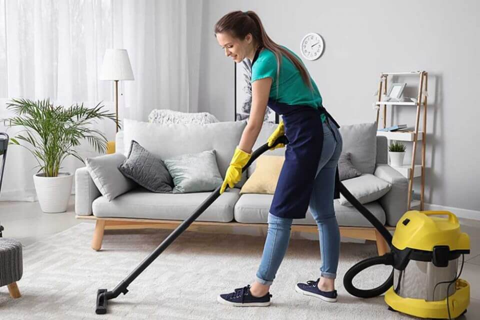 Professional-Cleaner
